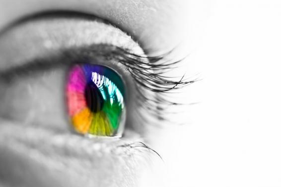 Vision stratégique et mission clarifiée pour davantage de bien-être au travail